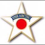 Arctic Star lapel badge