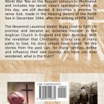 Back cover of Above and Beyond by Mark Biggs